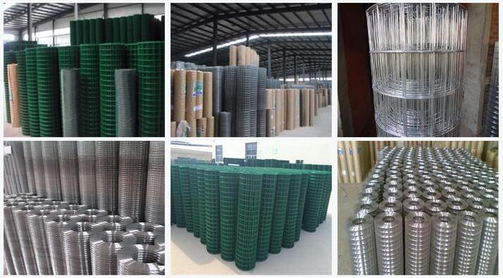 Welded wire mesh_Shijiazhuang DingJie Metal Products Co., LTD